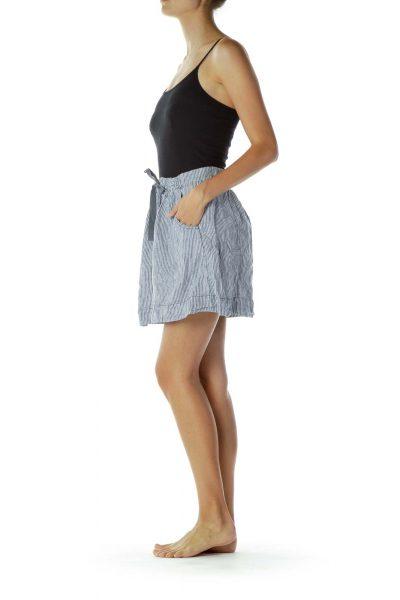 Blue White Pocketed Pinstripe Skirt