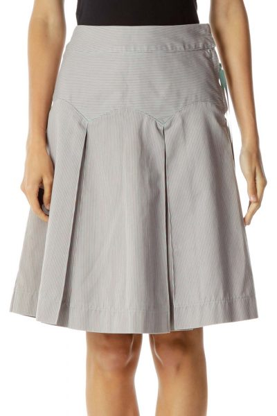 Purple Pink Pinstripe A-Line Skirt