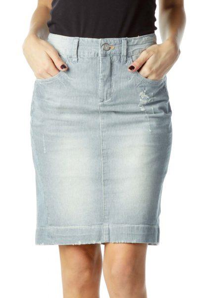 Blue Striped Denim Skirt